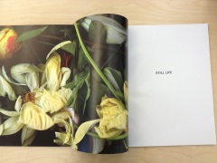 Nickolaus Typaldos - Still Life