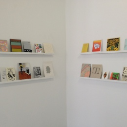 10_Blonde Art Books at Nudashank, Curated zine shelf02