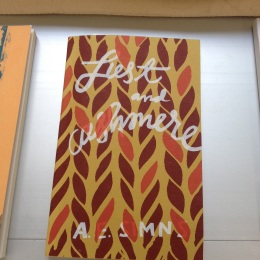 Blonde Art Books _ Hyde Park Art Center _ Green Lantern02