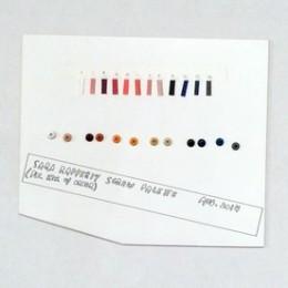 Sara Greenburger Rafferty, Wall publication: Screw Palette, 2015